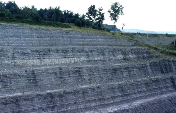 Seismite in the upper Fairview Formation